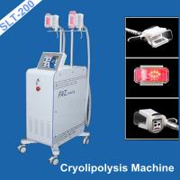 Best Vaccum Coolsculpting Fat Freezing Equipment / Cryolipolysis Weight Loss Machine wholesale