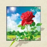 Best Waterproof Flower Images 5d 3D Lenticular Pictures 40x40cm For Restaurant wholesale