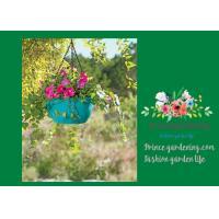 Cheap Colorful ABS Plastic Hanging Pots Includes Hanging Chain With Hook for sale