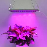 Cheap Indoor Garden LED Panel Grow Light With Meanwell Driver , 10mm Thickness for sale