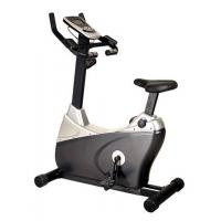 Best Club Professional Standing Fitness Bike wholesale