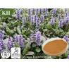 Buy cheap Ajuga Turkestanica Extract 25%, 40% Turkesterone from wholesalers
