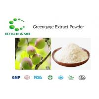 Best Greengage Extract Fruit Juice Powder AntiMicrobial And Inhibition Of Pathogenic Bacteria wholesale
