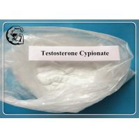 Best CAS 58-20-8 Raw Steroid Powders Testosterone Cypionate Test C For Muscle Enhancement wholesale