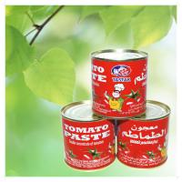 Best Canned tomato paste/ tomato sauce/ tomato ketchup 4004*24tins wholesale