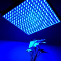 Cheap IP44 LED Panel Grow Light For Medical Plants / Greenhouse , High Brightness for sale