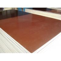 Best 610X2500*20MM  film faced plywood wholesale