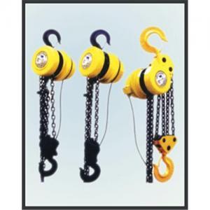China DHP electric chain hoist on sale