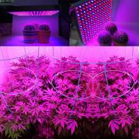 Best 1000 Watt RED Led Grow Lamp For Cannabis And Marijuana , Aluminum Body wholesale