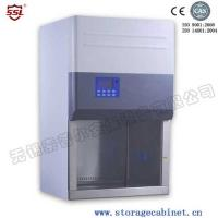Best Professional Class II BIO Safety Cabinet A2 With Timer For Laboratory wholesale