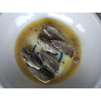 Best Delicious Natural Canned Fish Sardines In Vegetable Oil 125g Net Weight wholesale