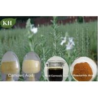 Buy cheap Rosemary Extract, carnosic acid 5% to 70%, rosemarinic acid 2% to 98%, ursolic from wholesalers
