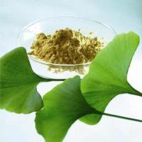 China Ginkgo Biloba Extract,Ginkgo bilobaL.Yellowish powder,24%Ginkgo biloba flavonoids,6%Ginkgo lactone on sale