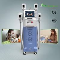 Best Exhibition Presented Cryolipolysis Fat Freezing Liposuction Machine wholesale
