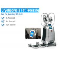 Best Safety Cryolipolysis Fat Loss Machines , Fat Freezing Body Contouring Machine wholesale