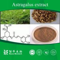 Best Manufacturer supply anti-aging Astragalus Root P.E wholesale