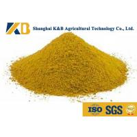 Best No Impurities Corn Gluten Meal / Pet Dog And Fish Feed For High Protein Content wholesale