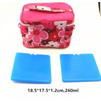 Best FDA Approved 260Ml Thermal Hard Block Ultra Thin Ice Pack For Cooler Bag wholesale