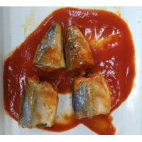 Best Soft Taste Mackerel Canned Fish / Tinned Mackerel In Tomato Sauce No Impurity wholesale