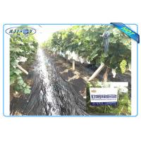 Best Anti UV PP Non Woven Landscape Fabric for Agricultural Area as Ground Coverings or Plant Bags wholesale