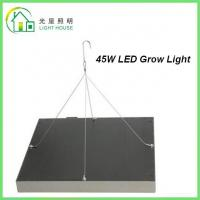 Cheap 45 Watts Grow Light Hydroponic LED Grow Light 35W Square Panel With Color Red & for sale