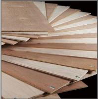 Best middle east  market bintangor plywood high quality wholesale
