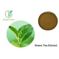 China Green Tea Extract And Weight Loss Anti - Aging , 30% Polyphenols Tea Extracts on sale