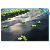 Best Black Garden Weed Control Fabric For MaintainTemperature To Benefit Healthy Growth wholesale