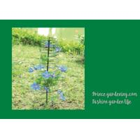 Best Plant Support Hoops / Garden Spiral Plant Support Black Color For Flower Support wholesale