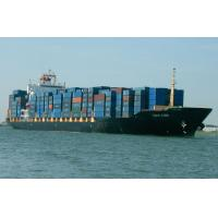Best FCL Ocean Freight to West Africa from Shenzhen wholesale