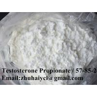 White Raw Testosterone Steroid Hormone , 57-85-2 Test Propionate Powder