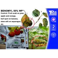 Best Off - White Powder Protectant Fungicides Benomyl 50% WP 17804-35-2 wholesale