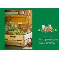 Best Silver Rustproof Garden Landscape Staples With Zinc Coated Nameplates wholesale