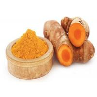 Best Powder Natural Plant Extract Turmeric Herb Curcumin For Dietary Supplement Ingredient wholesale