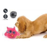 Non Toxic Dog Entertainment Toys , Indoor Plastic Material Pet Dog Toy