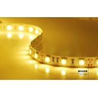 Best DC12/24V 5m IP65 LED Strips Light , Energy saving Led flexible strip lights wholesale