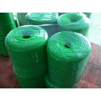Best Various twisted Polypropylene Twine UV additive , strong tenacity wholesale