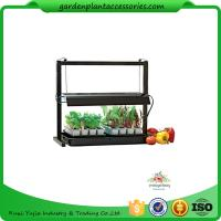Best Countertop Grow Light Garden Starter Kit / Plant Starter Kit With Seed Starting Trays wholesale