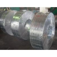 Best Grade 50, 490, SGC, Q195, SGCC, SGCD spangle Hot Dipped Galvanized Steel Strip / Strips wholesale