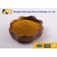 Best Dried Fish Powder / Fish Meal Chicken Feed Fresh Raw Material Slight Smell And Taste wholesale