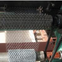 Best Electro Galvanized Chicken Wire Netting for Wall Plastering and Building wholesale