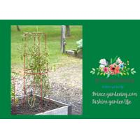 """Cheap Large Tall Tomato Plant Stakes , Red Heavy Duty Tomato Cages size 14"""" in for sale"""