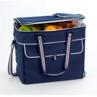 Best popular two handles picnic cooler bag with low price wholesale