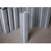 Best Thin Welded Wire Cloth Roll Type , Galvanized Stainless Steel Weld Mesh wholesale