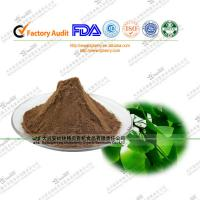 China quality Natural Ginkgo Biloba Extract  of ginkgo acid on sale