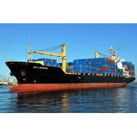 Best FCL Sea Freight Shipping to South America from Shenzhen wholesale