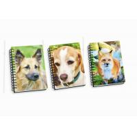 Best Customize A4 / A5 / A6 3D Spiral Flip Notebook Lenticular Flip For School Student wholesale