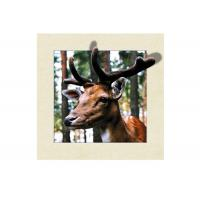 Cheap Animal Stock 5D 3D Lenticular Pictures PET Printing Service Deer image for sale