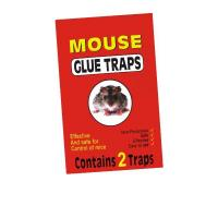 China Mouse glue traps on sale