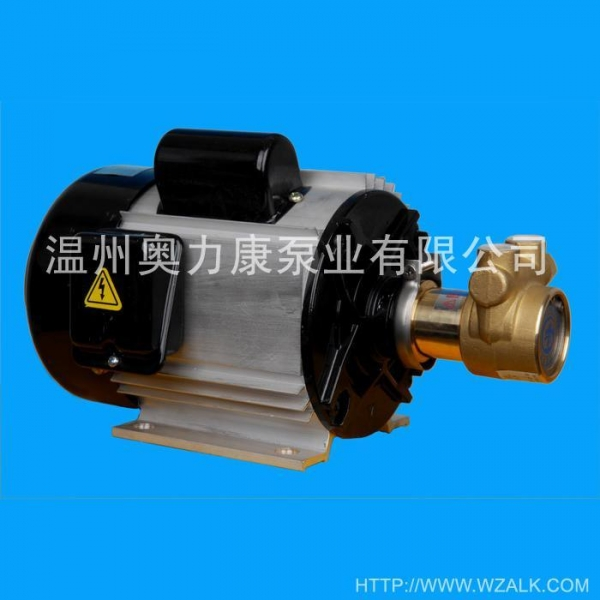 Cheap Aluminum Motor Item NO.: ALK-GY1A for sale